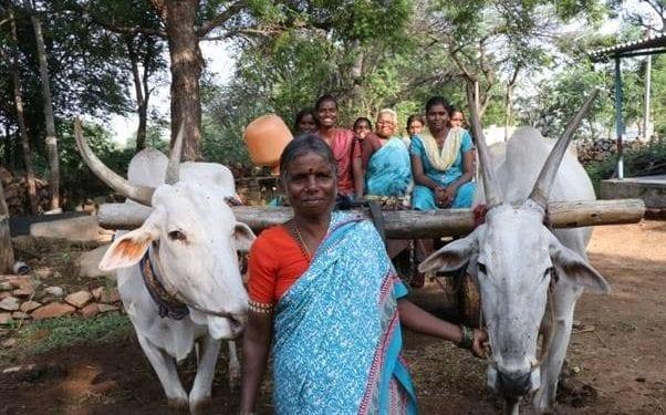 Mujeres rurales orgullosas que avanzan en la India