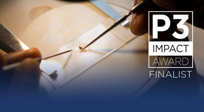 El Programa de Eliminación de la Malaria en la isla de Bioko entre los 5 finalistas al P3 Impact Award de Concordia