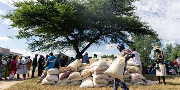Zimbabwe dice que la economía se reducirá 4.5% este año