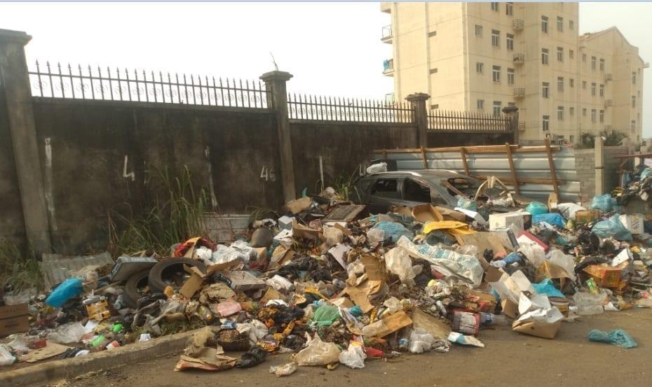 Entrevista con el Director General de Servicio de Limpieza y recogida de basura