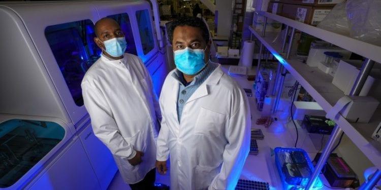Una empresa de Escondido desarrolla una prueba rápida para detectar el COVID-19