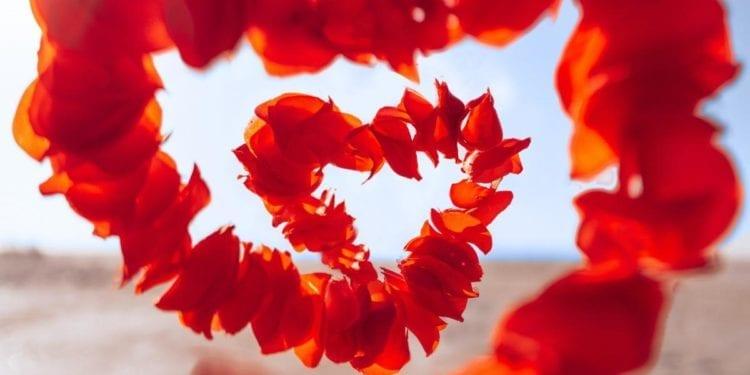 San Valentín: así funciona el amor según la ciencia