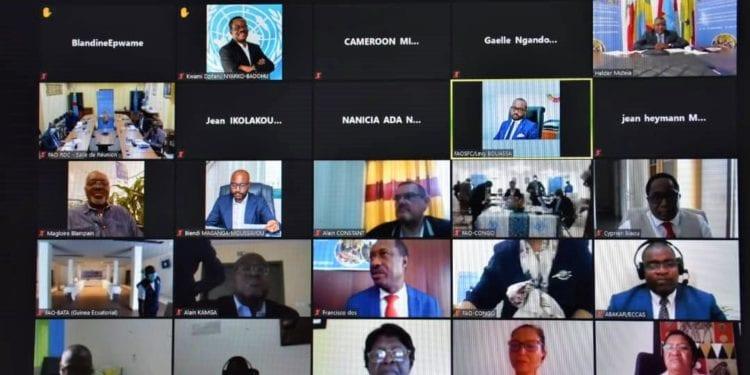 Comienza la 13ª Reunión multidisciplinaria de la FAO en la región de África Central