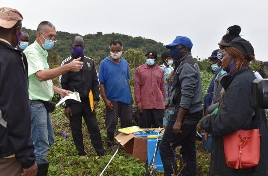 FAO asiste a los agricultores de Moka en la prevención y control de plagas y enfermedades