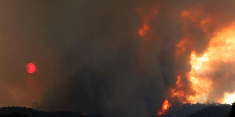 Bomberos y UME luchan contra un gran incendio forestal en Tarragona y Barcelona