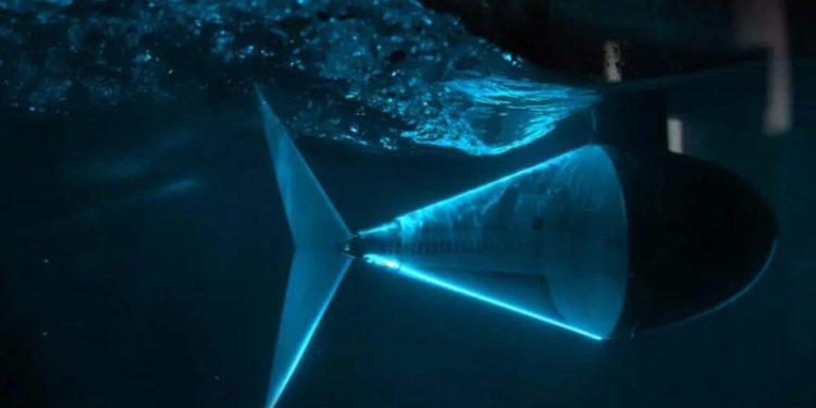 Primer robot con forma de pez, capaz de nadar de forma rápida y eficiente